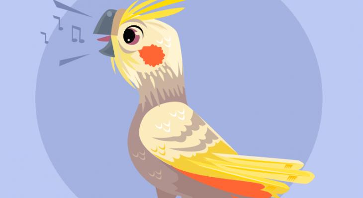 Поющий попугай. Загадки про забавных домашних любимцев.