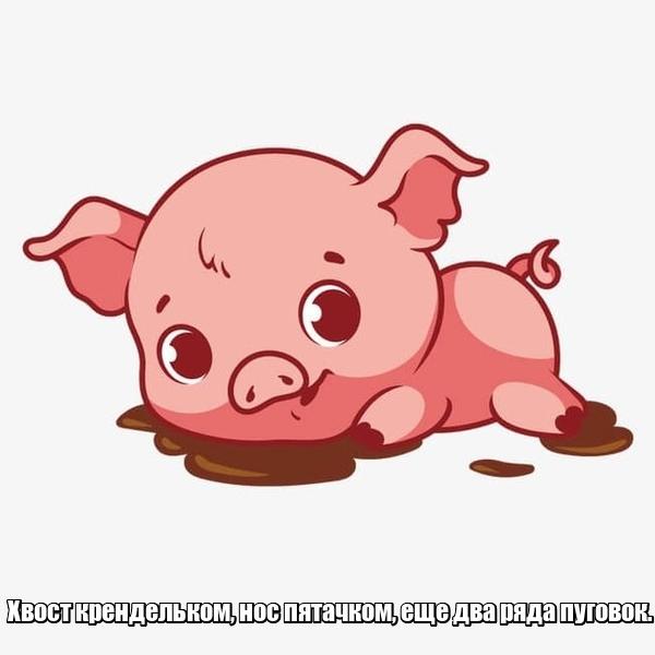 Хвост крендельком, нос пятачком, еще два ряда пуговок. Свинья.