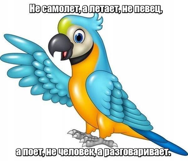 Не самолет, а летает, не певец, а поет, не человек, а разговаривает. Попугай.