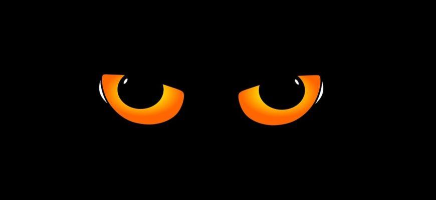 Желтые глаза. Ответы на детские загадки про глаза