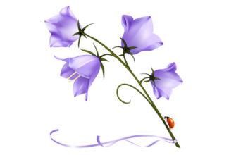 Красивый цветок. Детские головоломки про колокольчик.