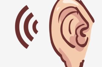 Ушко и звук. Детские головоломки про ухо.